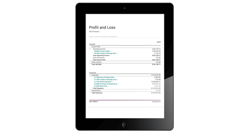 odoo-accounting-profit-&-loss